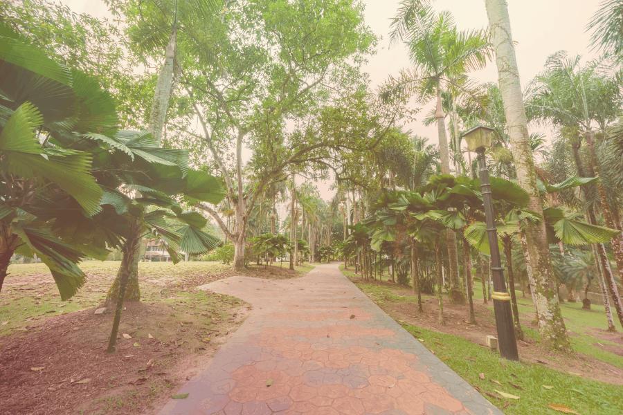 KL Botanical Garden