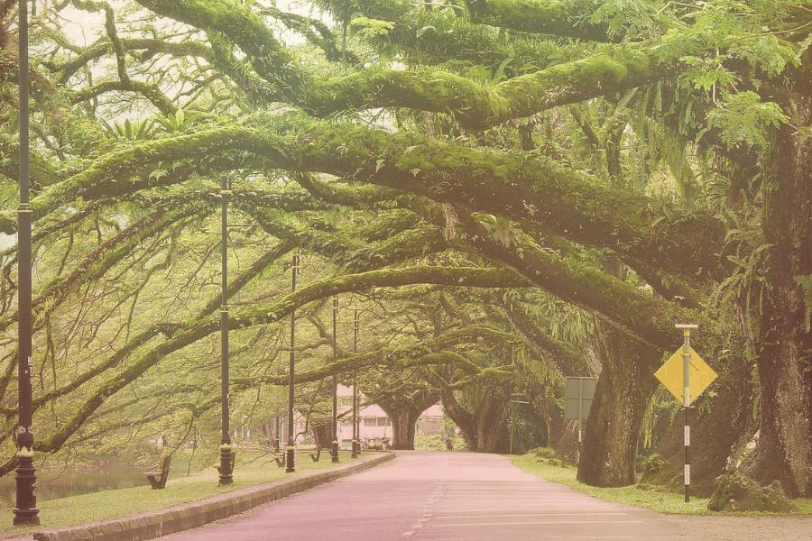 Tempat menarik di Taiping